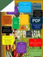 contabilidda-agropecuaria