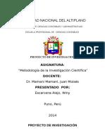 248107475-Proyecto-de-Investigacion-2014.docx