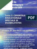 Tema 2 Dizabilitate Si CES