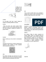 glosario (2)