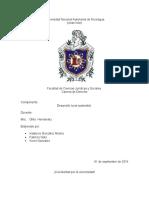 DESARROLLO-LOCAL-SOSTENIBLE.docx