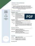 Curriculum Vitae Modelo3b Azul