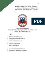 Auditoria Ambiental-1.docx