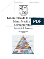 65839199 Pract Identificacion de Carbohidratos