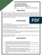 PROYECTOS Y PRACTICAS JUNIO- 4TO.-5TO. SEC.docx