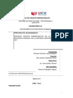 Informe Final Pp2 - Milagros