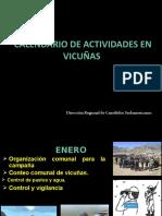 Aproximación_Calendario Vicuñero en Función a La Normatividad Vigentes