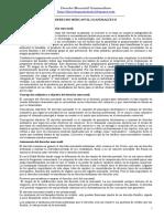-Temario-Derecho-Mercantil-Guatemalteco. EXCELENTE.doc