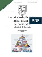 65839199-Pract-Identificacion-de-Carbohidratos.pdf