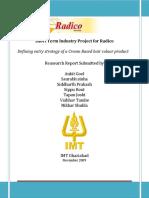 Radico Market Research Report-2009