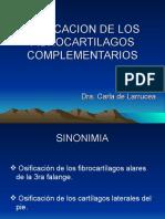 Osificacion de Los Fibrocartilagos Complementarios
