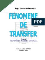Fenomene de Transfer 2