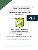 Informe Del Modulo III -Cuyes - Presvitero