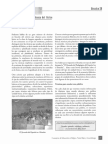 Taller Higueras.pdf