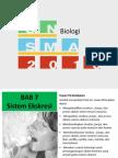 Bab 7 Sistem Ekskresi (1).pptx