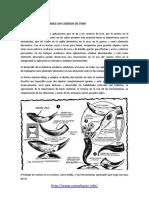 Como hacer manualidades con cuernos de toro.pdf