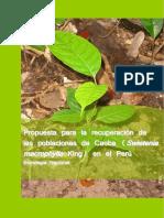Propuesta para la recuperacion de las poblaciones de caoba en el Peru.pdf