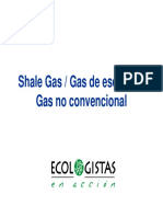 shalegaspresentacion-120607015538-phpapp02.pdf