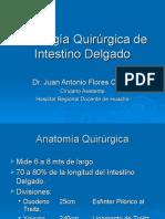 11 Patologia Qx Intestino Delgado