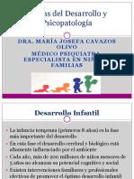 Etapas Del Desarrollo y Psicopatologia Para Los Residentes (1)
