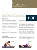download-a-brochure-on-the-stott-pilates-five-basic-principles.pdf