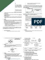 Division Celular- Biologia