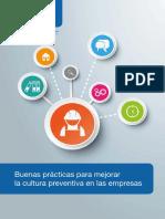 Dossier_Cultura_Preventiva_11.pdf