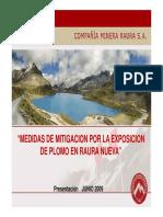 158834501-Informe-CIA-Minera-Raura.pdf