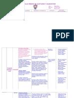 116774888-Modelo-Curricular-Periodo-de-Adaptacion-y-Diagnostica-Medio-Menor-2011.doc