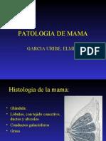 22 PATOLOGIA DE MAMAs