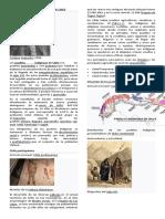 Pueblos Originarios de Chile, Para Alumnos