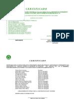 certificado cipa transmoc