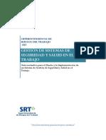462_SGSST ARGENTINA[1].pdf