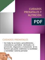 cuidados_prenatales.ppt