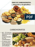 Cap3a.MetabolismoCHO (1)