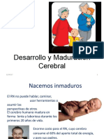 Desarrollo y Maduración Cerebral