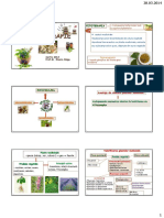 Curs fitoterapie.pdf