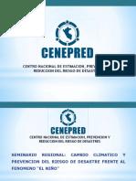 cenepred_ayacucho.pdf