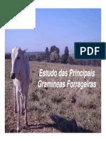 aula-braquiaria.pdf
