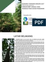 'Dokumen.tips Proposal Budidaya Sengon Super Bimasakti 2.PDF'