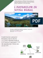 Manea.rolul Padurilor in Spatiul Rural