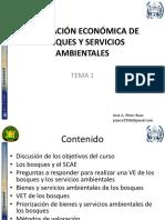 Valoracion economica de bosques