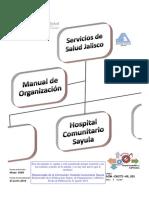 Dom-og272-h9 001 Manual de Organizacion Hospital Comunitario Sayula