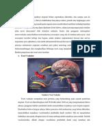 Patomekanisme migrain