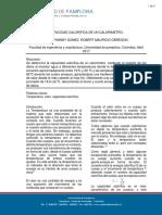 INFORME CP.docx