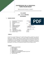 SILABO CC.NN .CNA.ENFER.doc