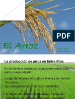 elarroz-111028182935-phpapp01.pptx