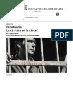 Prontuario, La Cámara en La Cárcel