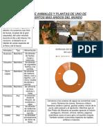 Especies de Animales y Plantas de Uno de Los Desiertos Más Áridos Del Mundo
