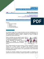 Monografia Neurosicoeducacion Silvia.vazquez
